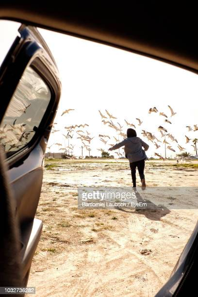 Rear View Of Woman Running Against Seagulls Flying Over Ground