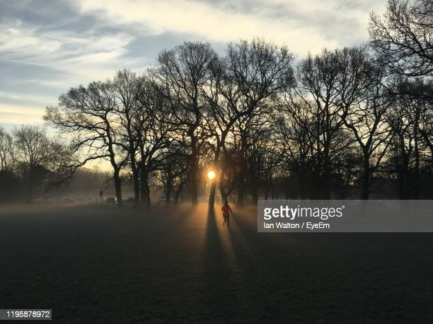 rear view of woman running on land during sunset - streatham stock pictures, royalty-free photos & images