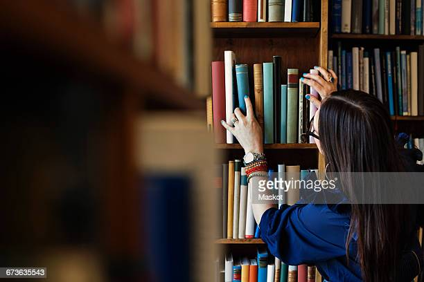 rear view of woman searching book in library - book store stock photos and pictures