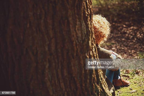 rear view of woman sitting by tree trunk - bortes cristian stock photos and pictures