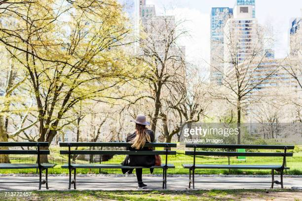 rear view of woman sitting on bench at central park in city - panchina foto e immagini stock