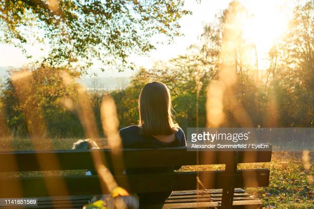 rear view of woman sitting on bench in park during sunset - hesse germany stock pictures, royalty-free photos & images