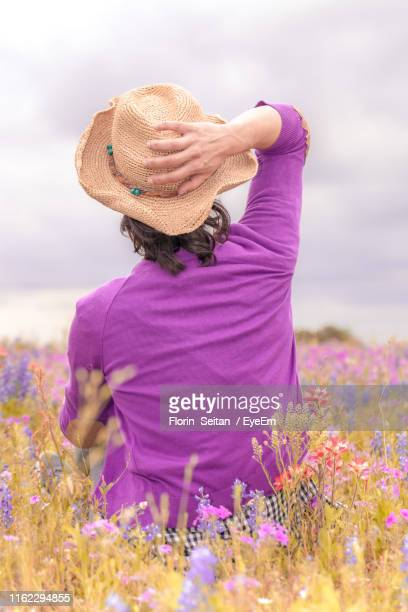 rear view of woman sitting on field against sky - florin seitan stock pictures, royalty-free photos & images