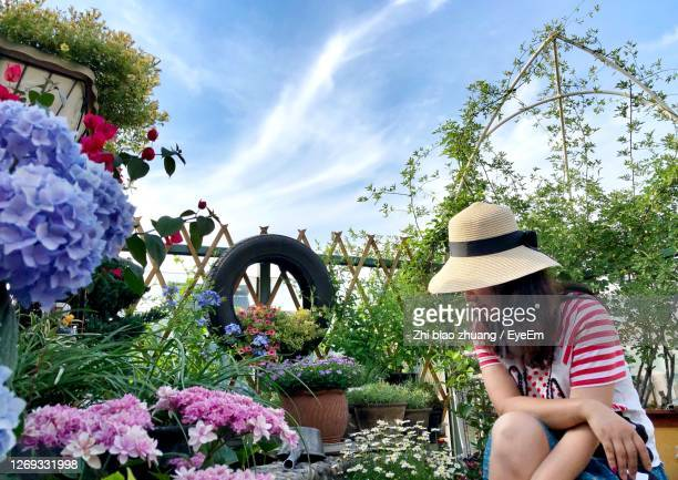 rear view of woman sitting on pink flowering plants - one mature woman only stock pictures, royalty-free photos & images