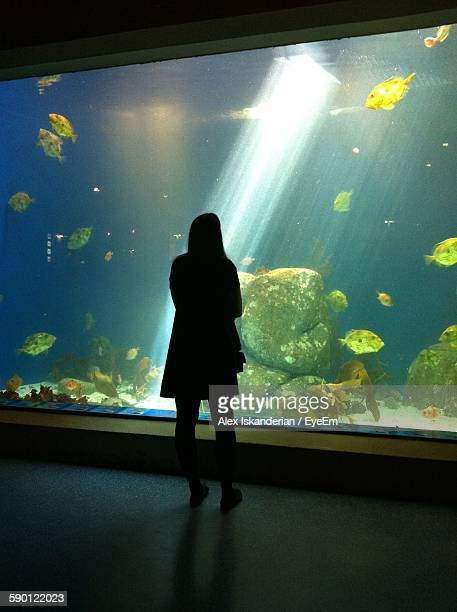 Rear View Of Woman Standing Against Fish Tank At Aquarium