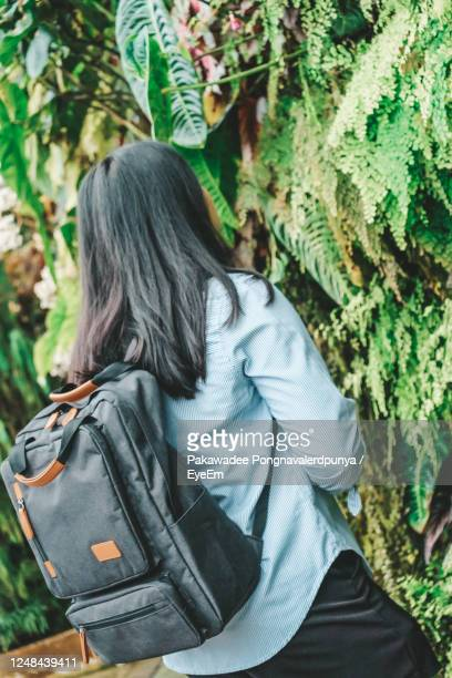 rear view of woman standing against plants in forest - reality fernsehen stock pictures, royalty-free photos & images