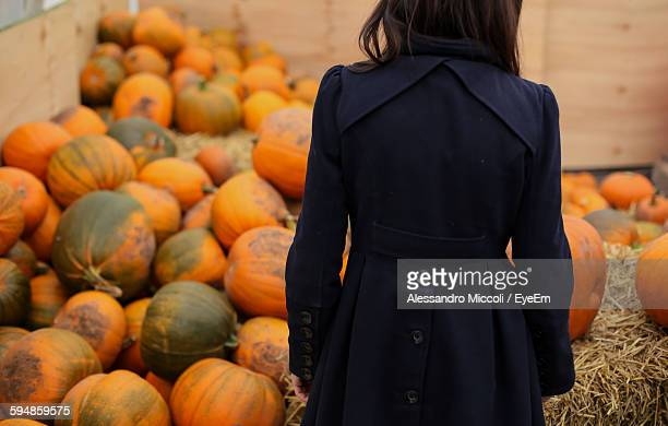 rear view of woman standing against pumpkins - alessandro miccoli stockfoto's en -beelden