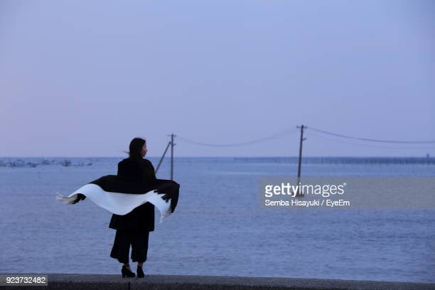 Rear View Of Woman Standing Against Sea During Sunset