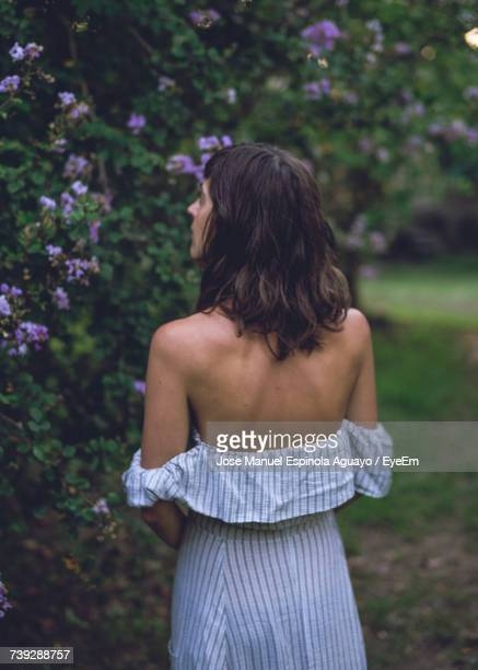 rear view of woman standing against trees - mid length hair stock pictures, royalty-free photos & images
