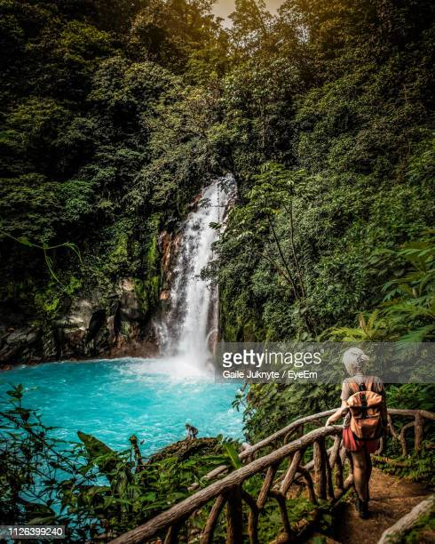 rear view of woman standing against waterfall in forest - costa rica stock pictures, royalty-free photos & images