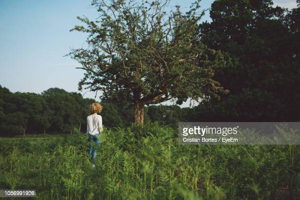 rear view of woman standing amidst plants on field against sky - bortes stock pictures, royalty-free photos & images