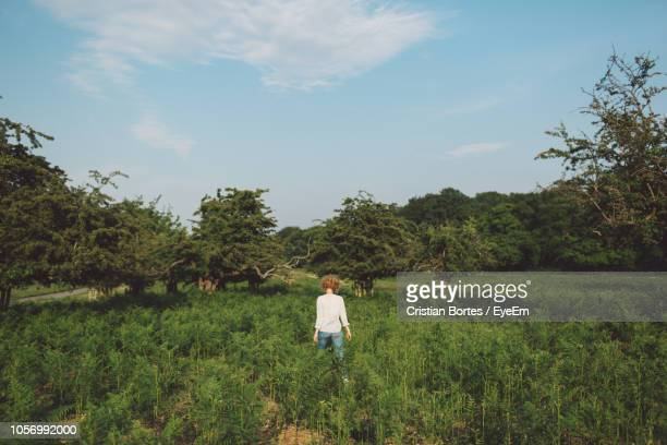 rear view of woman standing amidst plants on field against sky - bortes stockfoto's en -beelden