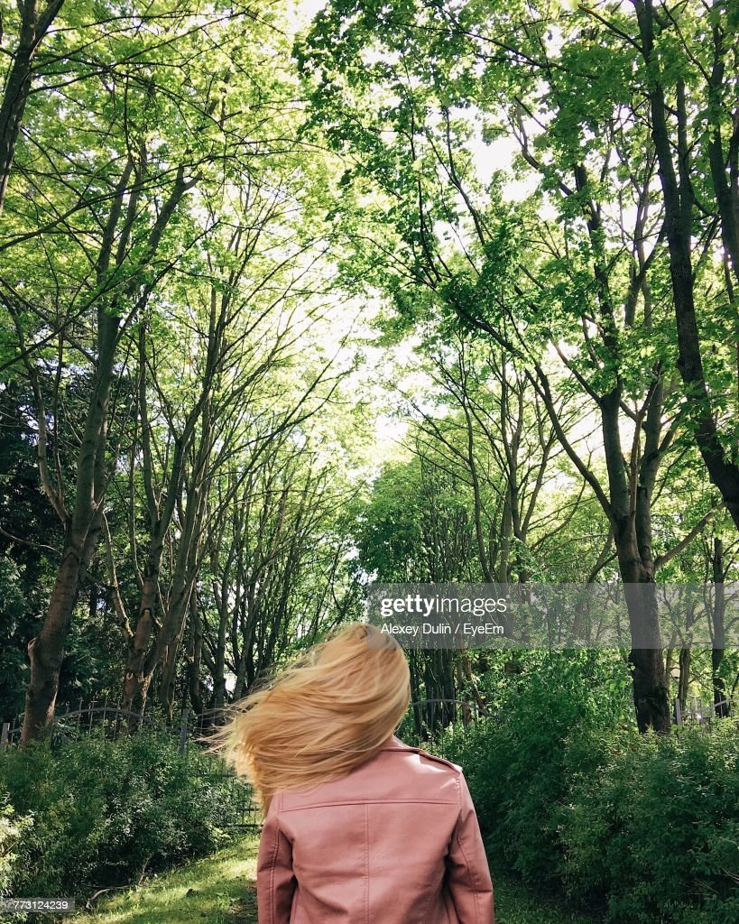 Rear View Of Woman Standing Amidst Trees : Photo