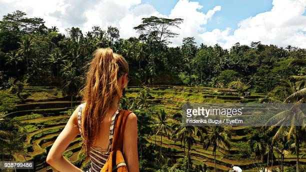 rear view of woman standing at terraced field - bali stock pictures, royalty-free photos & images