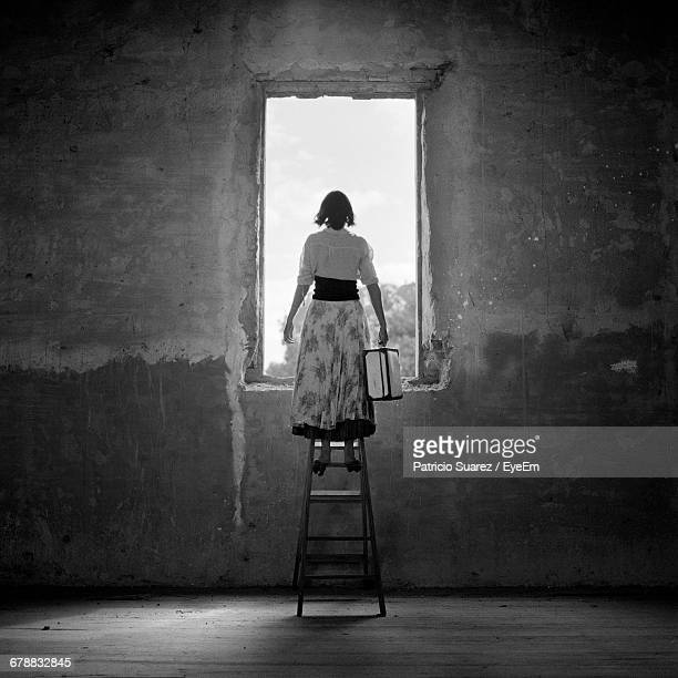 Rear View Of Woman Standing On A Ladder Looking Out Window