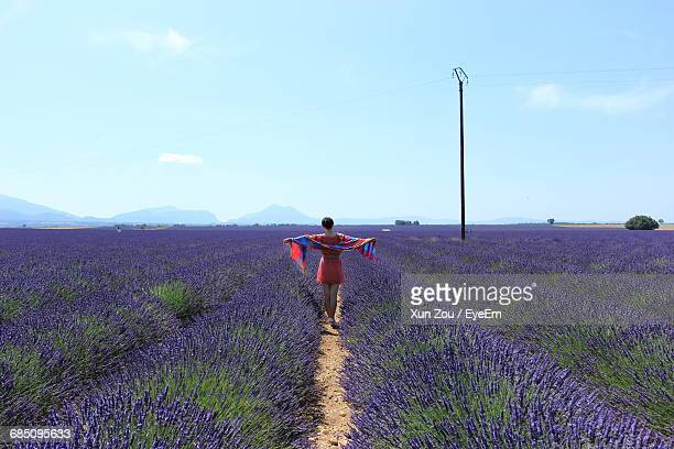 Rear View Of Woman Standing On Lavender Field With Arms Outstretched Against Sky