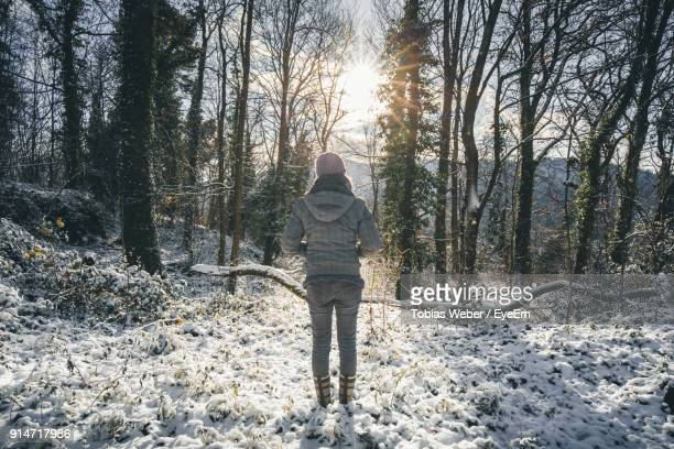 rear view of woman standing on snow against trees in forest - baden württemberg stock photos and pictures