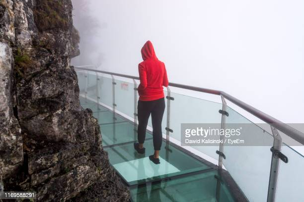 rear view of woman standing on staircase - tianmen stock pictures, royalty-free photos & images