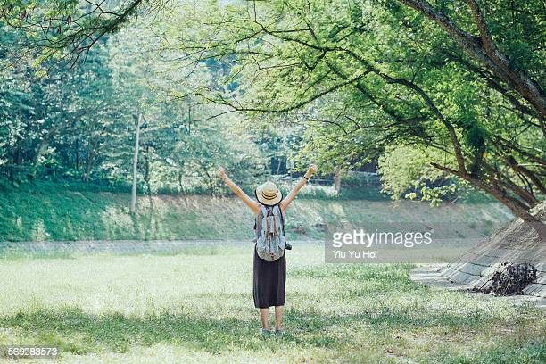 rear view of woman stretching her arms in nature - yiu yu hoi stock pictures, royalty-free photos & images