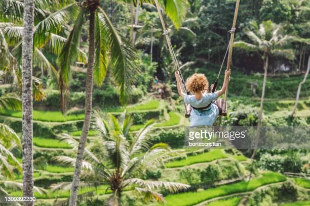 rear view of woman swinging against trees - bortes stock-fotos und bilder