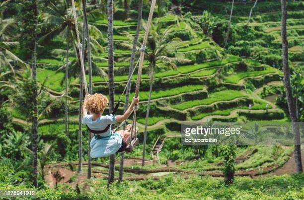rear view of woman swinging in forest - bortes stockfoto's en -beelden