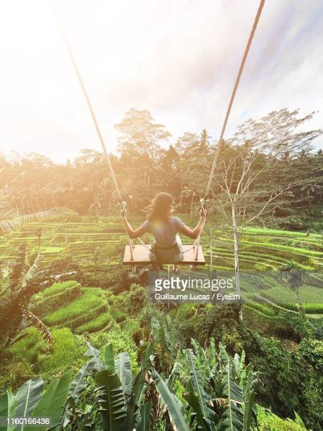 rear view of woman swinging over agricultural field against sky - denpasar stock pictures, royalty-free photos & images