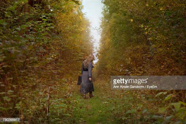 Rear View Of Woman Walking Amidst Plants In Forest During Autumn