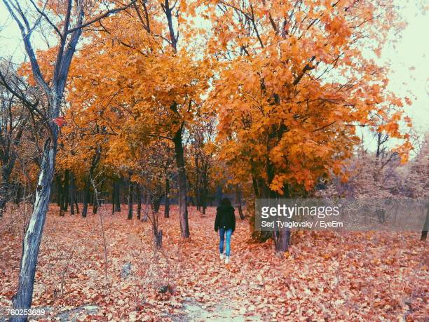 Rear View Of Woman Walking Amidst Trees During Autumn At Forest