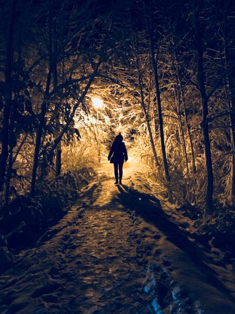 Rear View Of Woman Walking In Forest During Winter At Night