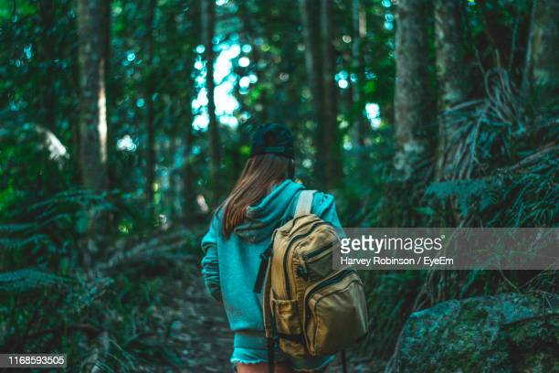 rear view of woman walking in forest - rucksack stock pictures, royalty-free photos & images