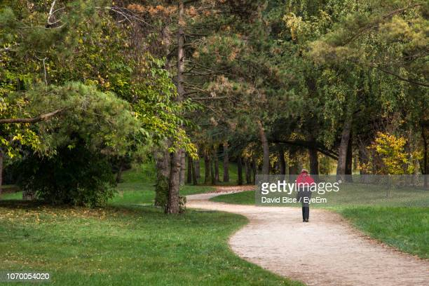 rear view of woman walking in park - シャロンシュルソーヌ ストックフォトと画像