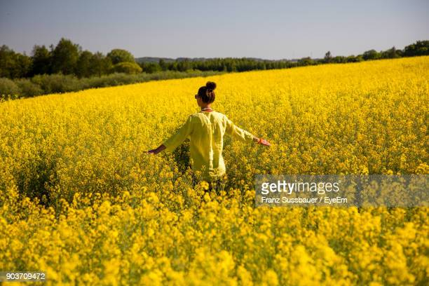 Rear View Of Woman Walking In Rape Field