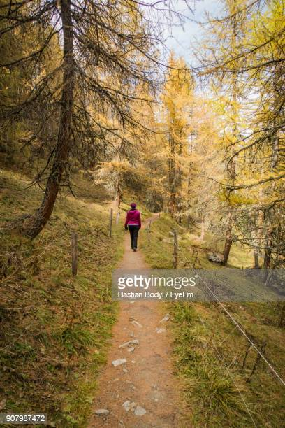 Rear View Of Woman Walking On Dirt Road In Forest