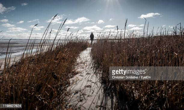 rear view of woman walking on field against sky - christian soldatke stock pictures, royalty-free photos & images