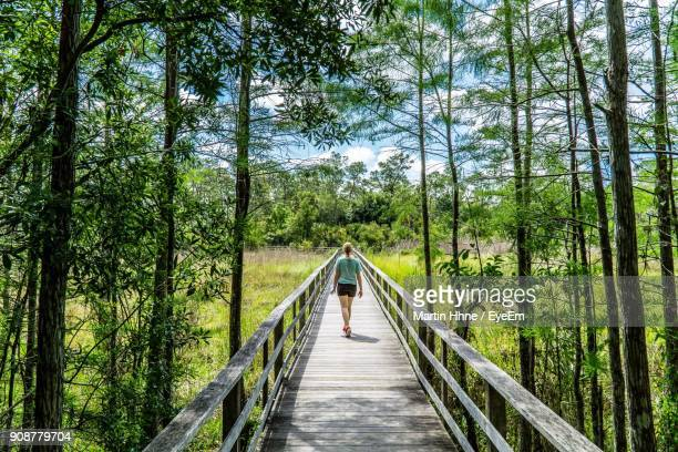 rear view of woman walking on footbridge amidst trees in forest - footbridge stock photos and pictures