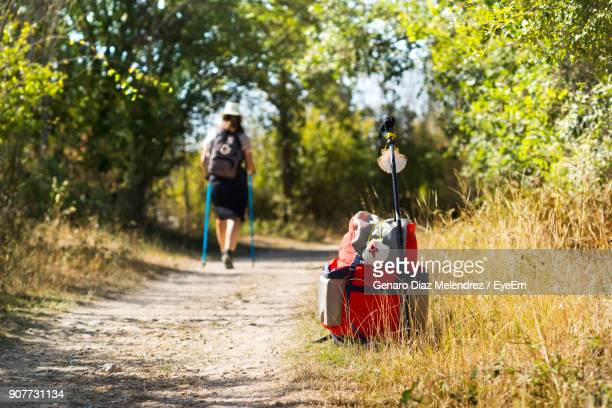 rear view of woman walking on footpath at forest - pilgrimage stock pictures, royalty-free photos & images