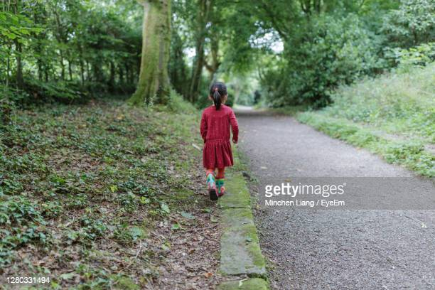 rear view of woman walking on footpath in forest - ireland stock pictures, royalty-free photos & images