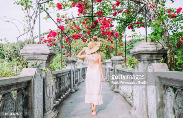 rear view of woman walking on footpath with red flowers - denpasar stock pictures, royalty-free photos & images