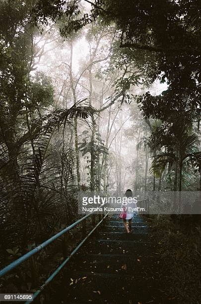 Rear View Of Woman Walking On Stairs In Foggy Weather