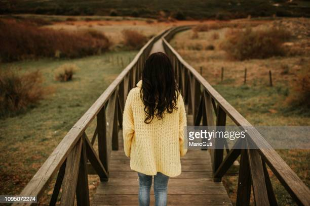 rear view of woman walking - black hair stock pictures, royalty-free photos & images