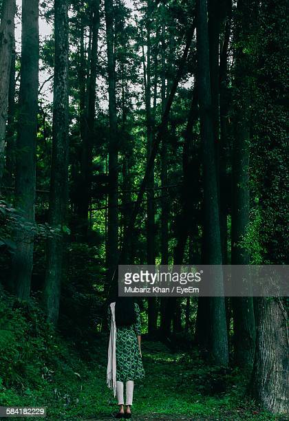 rear view of woman wearing salwar kameez amidst trees in forest - salwar kameez stock pictures, royalty-free photos & images