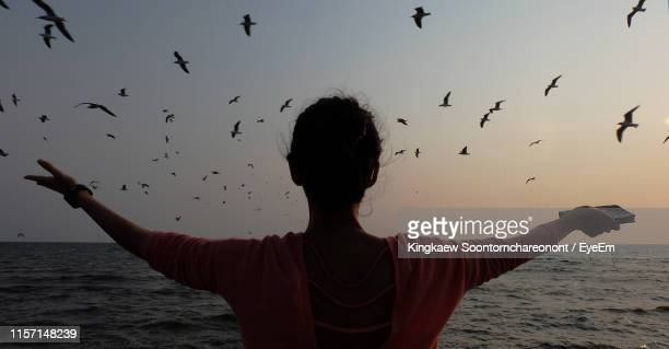 rear view of woman with arms outstretched looking at birds flying over seascape against sky during sunset - seascape stock pictures, royalty-free photos & images
