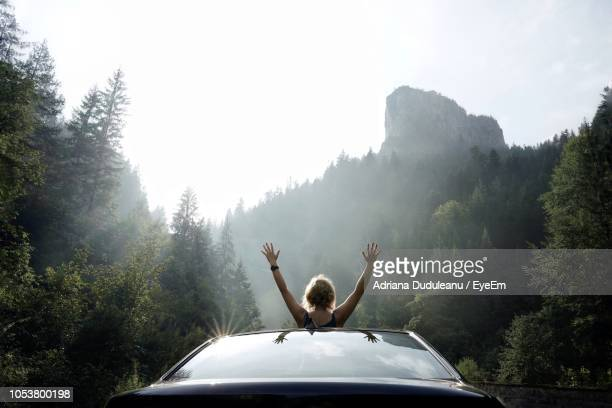 rear view of woman with arms raised in car at forest against sky - begeisterung stock-fotos und bilder