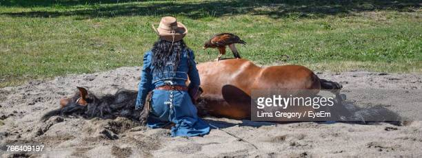 rear view of woman with dead horse and falcon on field - animales salvajes fotografías e imágenes de stock