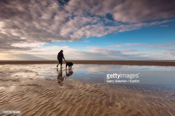 rear view of woman with dog walking at beach against sky during sunset - lincolnshire stock pictures, royalty-free photos & images