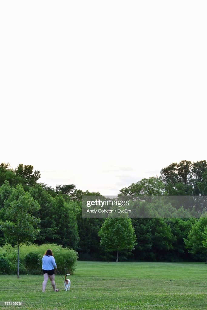 Rear View Of Woman With Dog Walking On Field Against Clear Sky : Photo