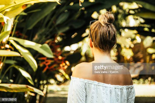 rear view of woman with hair bun - up do stock pictures, royalty-free photos & images