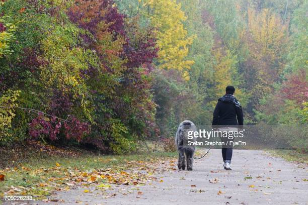 Rear View Of Woman With Irish Wolfhound Walking On Road During Autumn