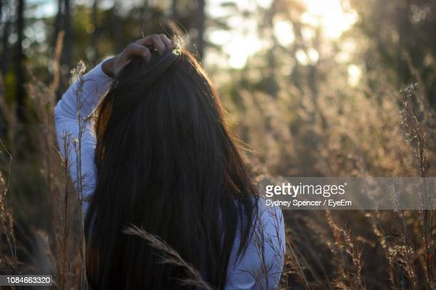 rear view of woman with long brown hair against trees - sydney ストックフォトと画像