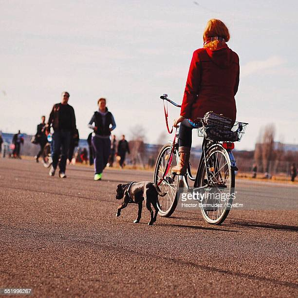 Rear View Of Women Cycling With Dog On Leashes